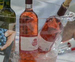 vino-dalmacije-2019-004