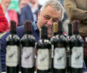 vino-dalmacije-2019-026