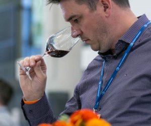 vino-dalmacije-2019-036