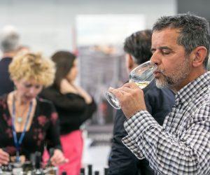 vino-dalmacije-2019-050