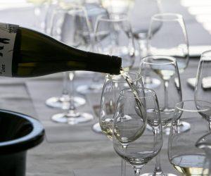 vino-dalmacije-2019-079