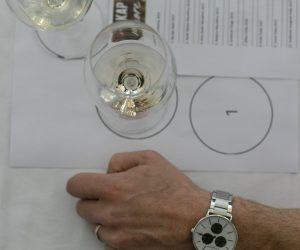 vino-dalmacije-2019-083