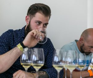 vino-dalmacije-2019-086
