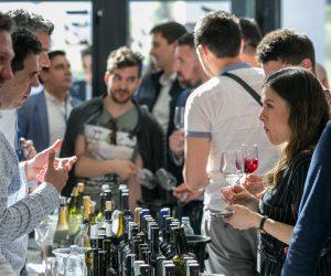 vino-dalmacije-2019-098