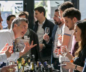 vino-dalmacije-2019-099