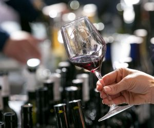 vino-dalmacije-2019-102