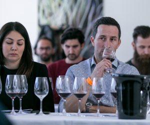 vino-dalmacije-2019-104