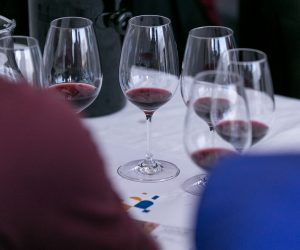 vino-dalmacije-2019-105