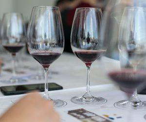 vino-dalmacije-2019-106