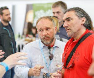 vino-dalmacije-2019-147