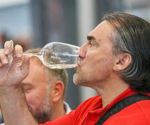 vino-dalmacije-2019-148