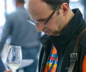 vino-dalmacije-2019-165