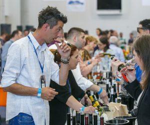 vino-dalmacije-2019-166