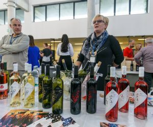 vino-dalmacije-2019-172