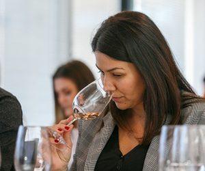 vino-dalmacije-2019-180
